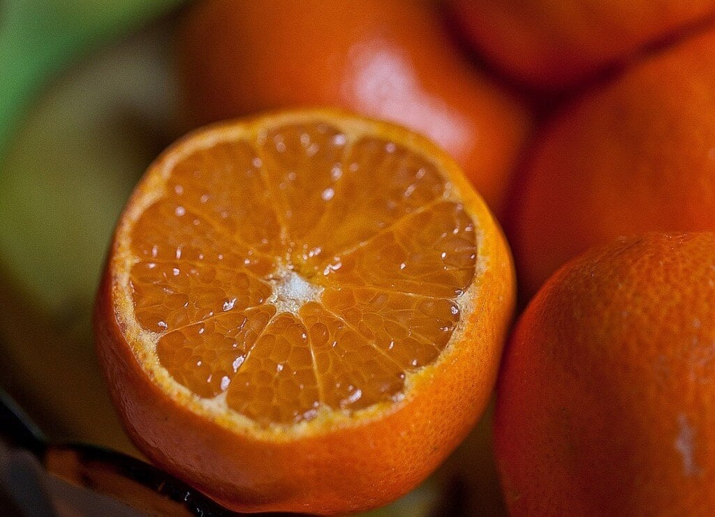 fruit-665621_1280