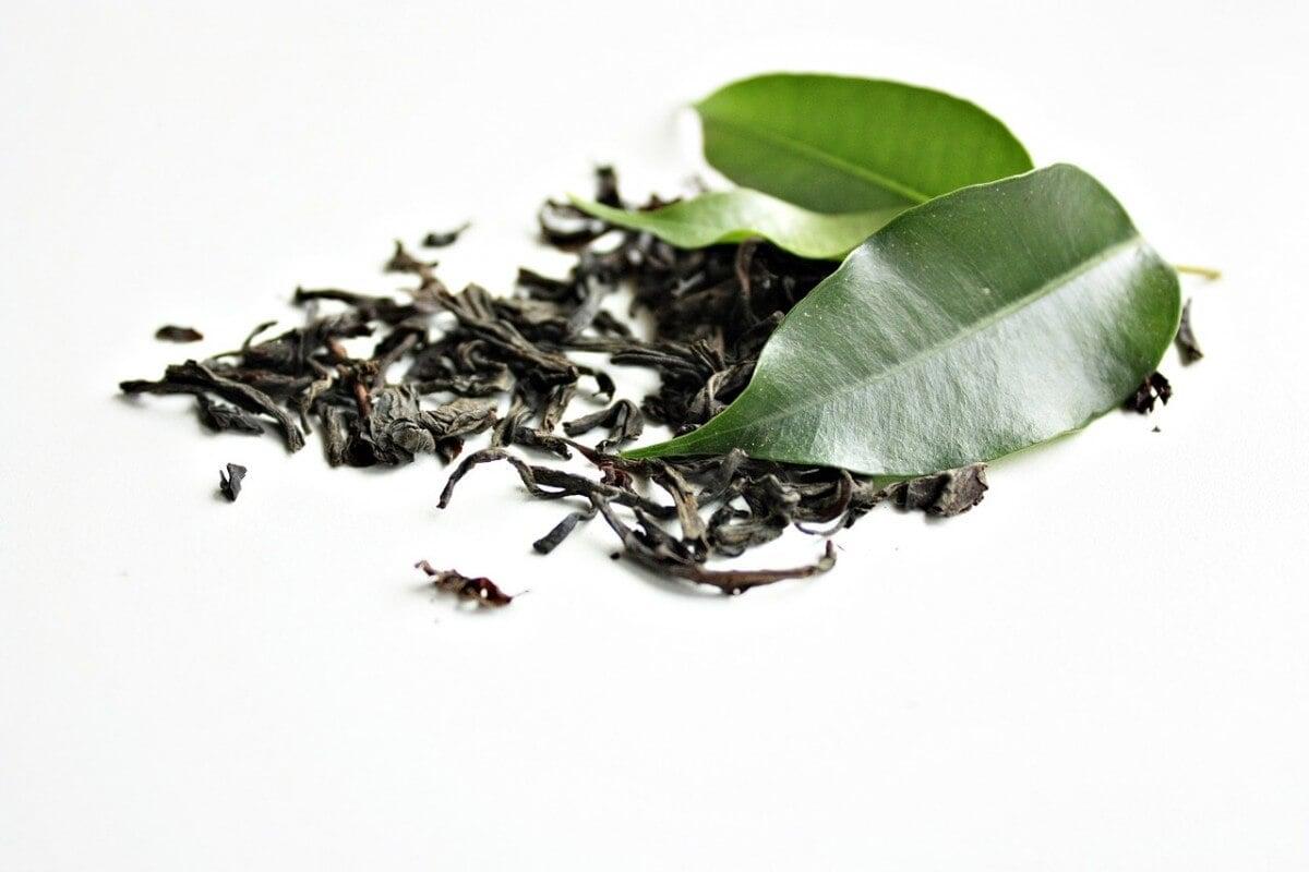green-tea-1233874_1280