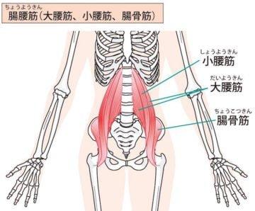 腸腰筋_足パカ