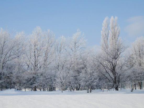 冬,ダイエット,北海道,防寒対策,寒さ対策,室内,窓