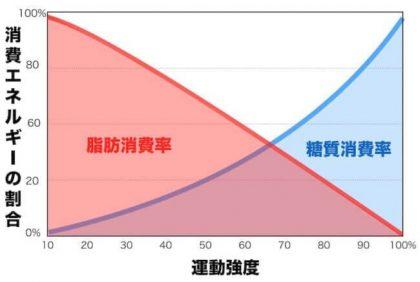 脂肪_糖質_消費割合_運動強度