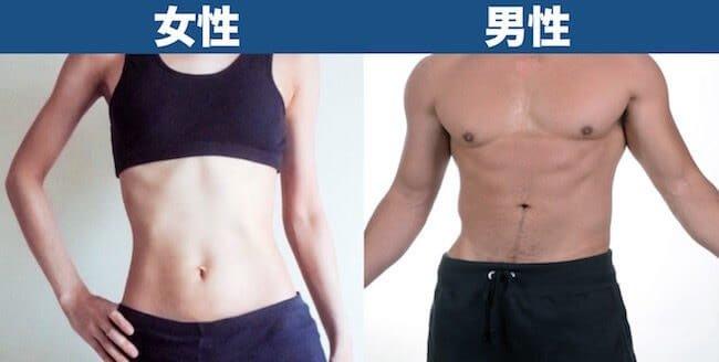 体脂肪率20%見た目_男女比較