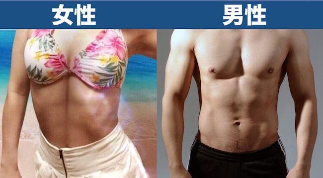 体脂肪率15%見た目_男女比較