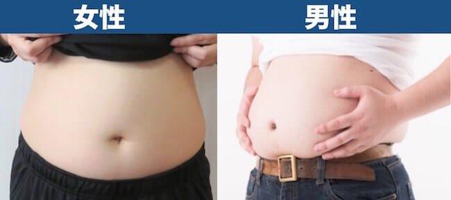 体脂肪率35%見た目_男女比較