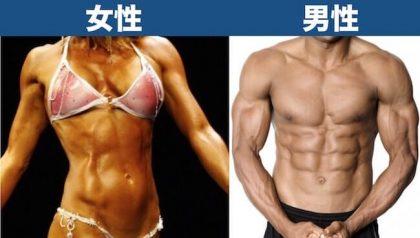 体脂肪率10%見た目_男女比較