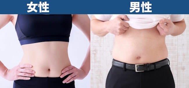 体脂肪率25%見た目_男女比較