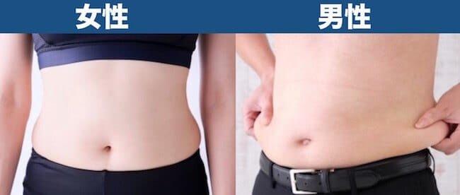 体脂肪率30%見た目_男女比較